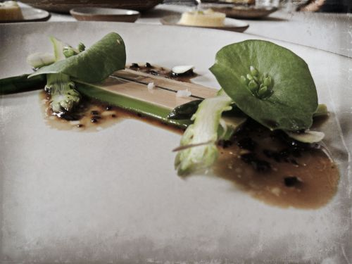 Foie Gras Terrine with Black Truffle & Asparagus