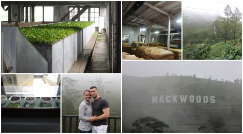 Enjoying the grounds and the factory at Mackwoods on a very misty afternoon...